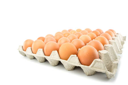 group of eggs isolated on white Stock Photo