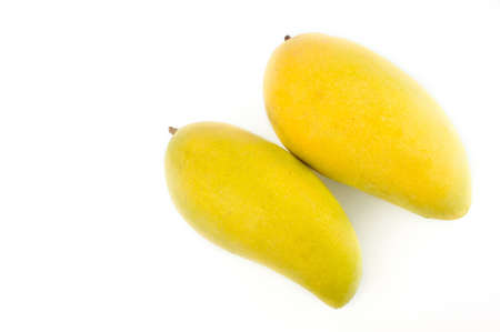 two mangoes isolated on white