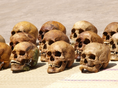 Skulls in rows Stock Photo - 16776586
