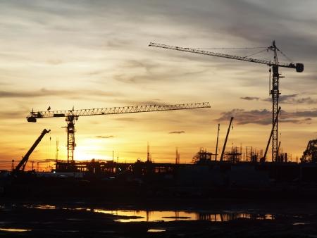 Silhoutte crane