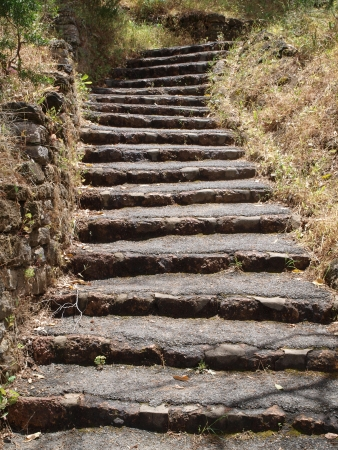 Stone stairs path in forest
