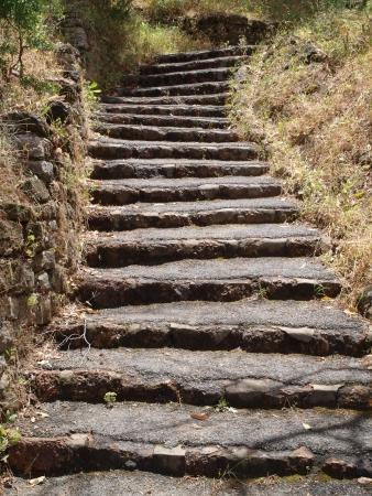 Un escalier en pierre chemin dans la for�t