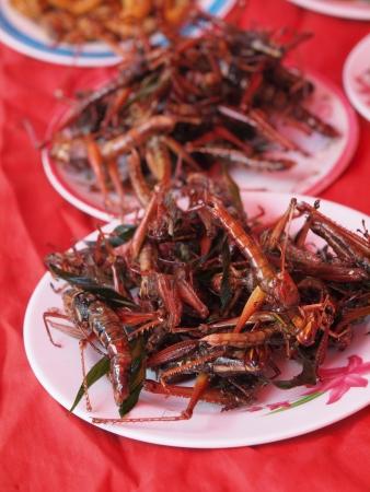 Plat d'insectes frits comme la nourriture