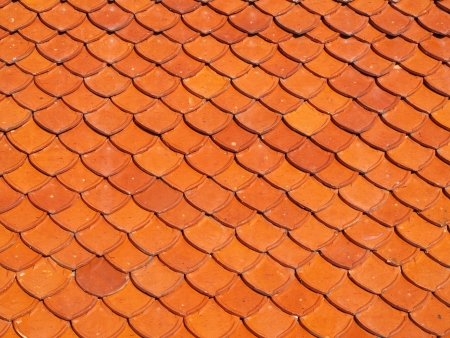 Ceramic roof scale shape tile photo