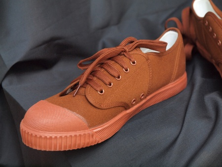 Pair of new brown canvas shoes Stock Photo - 22099042
