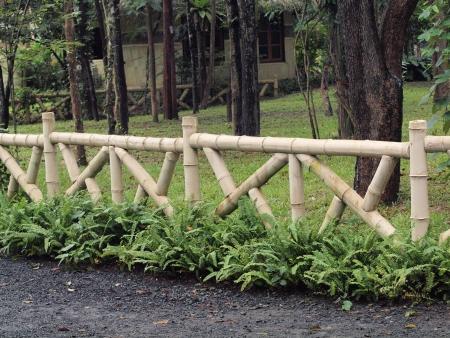 Bambus zaun im tropical park lizenzfreie fotos, bilder und stock ...