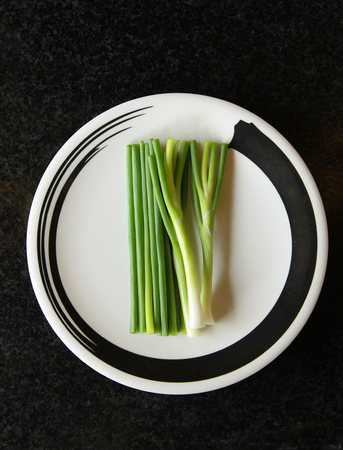 Onions serve in Zen circle plate