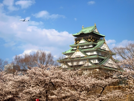 Japanese ancient castle with Sakura blossom