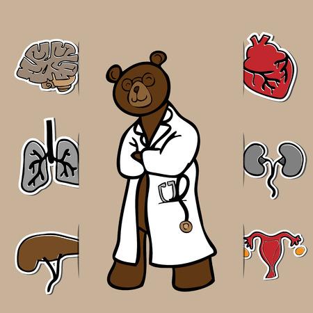 医者のクマと人間の臓器の漫画のアイコンを設定