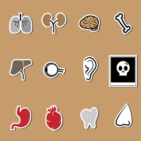 Organs design health care set Vector