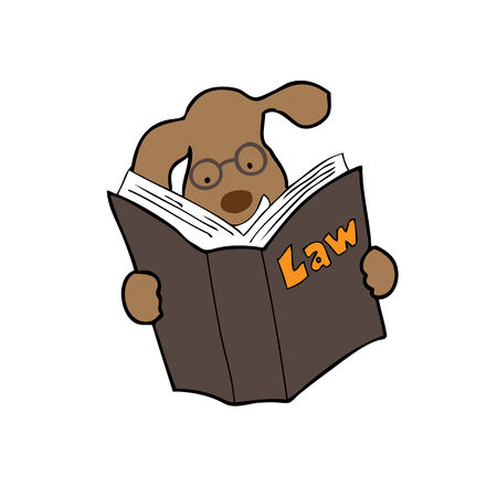 Dog reading law book cartoon Vector