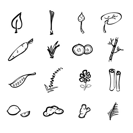 Herbs and spices icons cartoon vector Ilustração