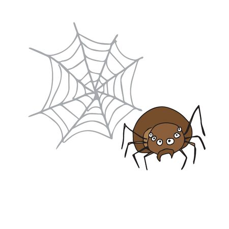 spider web: Halloween brown spider and web