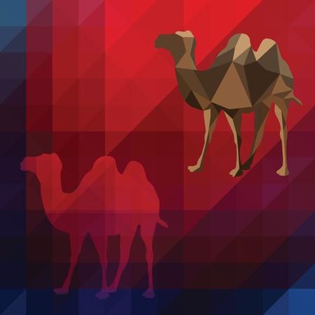 digital background: Animal camel on digital background
