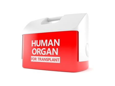 Human organ for transplant concept isolated on white background