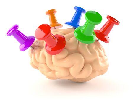 Brain with thumbtacks isoalted on white background