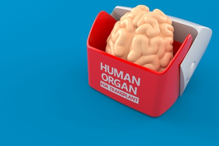 Human organ for transplant concept isolated on blue background. 3d illustration