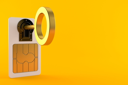 SIM lock concept isolated on orange background. 3d illustration