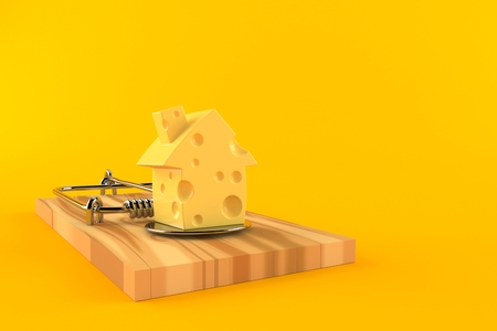 Mouse trap with cheese in house shape isolated on orange background. 3d illustration