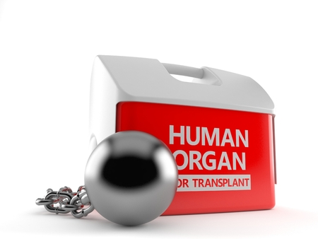 Cooler for human organ with prison ball isolated on white background. 3d illustration