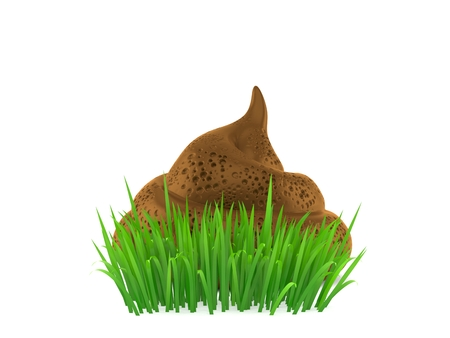 Dung poo on grass isolated on white background. 3d illustration Stock Photo