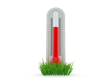 Thermometer on grass isolated on white background. 3d illustration Stock Photo