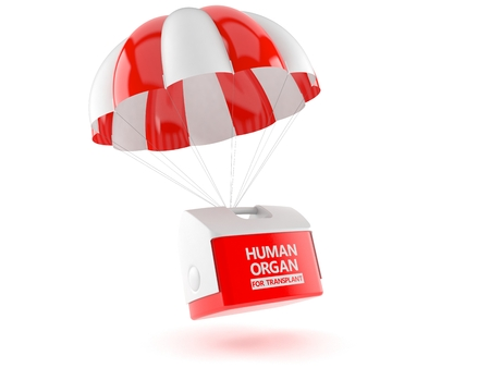 Cooler for human organ with parachute isolated on white background. 3d illustration
