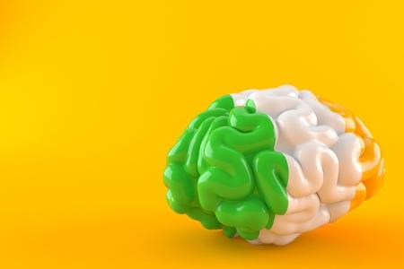 Brain with irish flag isolated on orange background. 3d illustration