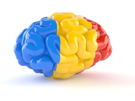 Brain with romanian flag isolated on white background. 3d illustration Stockfoto