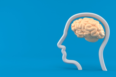 Brain with profile face isolated on blue background. 3d illustration Stock Photo
