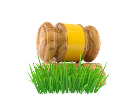 Gavel on grass isolated on white background. 3d illustration