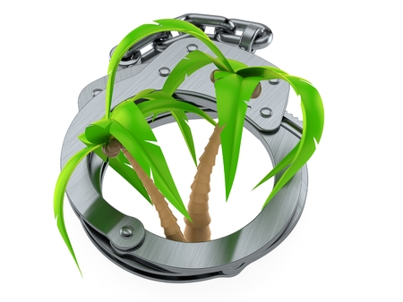 Palm tree inside handcuffs isolated on white background. 3d illustration 写真素材