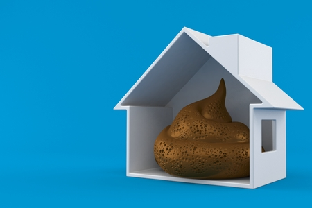Dung poo inside house cross-section isolated on blue background. 3d illustration