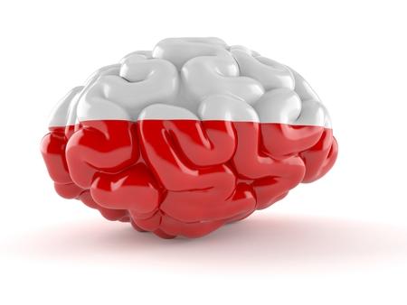 Brain with polish flag isolated on white background. 3d illustration Stockfoto