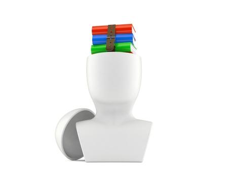 Books inside head isolated on white background. 3d illustration Reklamní fotografie - 118991085