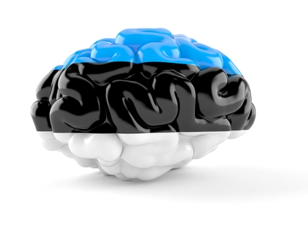 Brain with estonian flag isolated on white background. 3d illustration