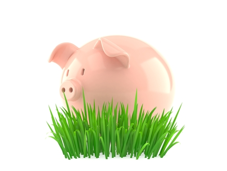 Piggy bank on grass isolated on white background. 3d illustration Stock Photo