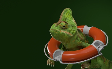Chameleon inside life buoy on green background. 3d illustration