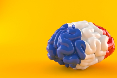 Brain with french flag isolated on orange background. 3d illustration