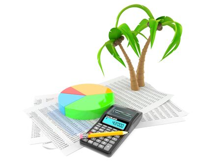Palm tree with documents and calculator isolated on white background. 3d illustration
