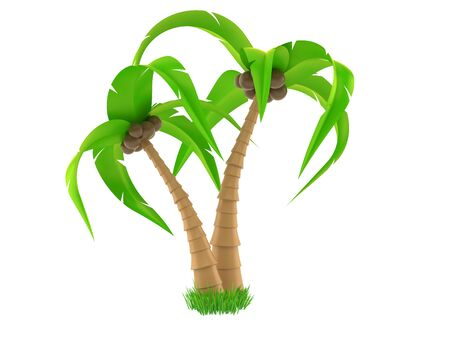 Palm tree isolated on white background. 3d illustration 스톡 콘텐츠