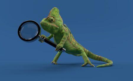 Chameleon holding magnifying glass isolated on blue background. 3d illustration Stok Fotoğraf