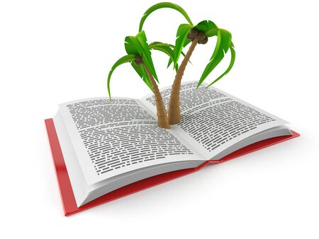 Palm tree on open book isolated on white background. 3d illustration Zdjęcie Seryjne