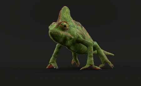 Chameleon standing on grey background on grey background. 3d illustration Standard-Bild