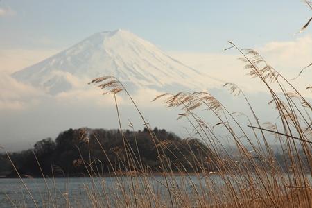 꼭대기가 눈으로 덮인: View of Mount Fuji from Kawaguchiko lake in march,Snow-capped Mount Fuji with clear sky background