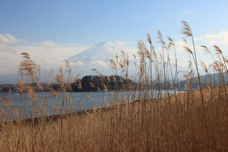 꼭대기가 눈으로 덮인: 맑은 하늘 배경 3 월, 눈 덮인 후지산 가와구치 호수에서 후지산의 전망