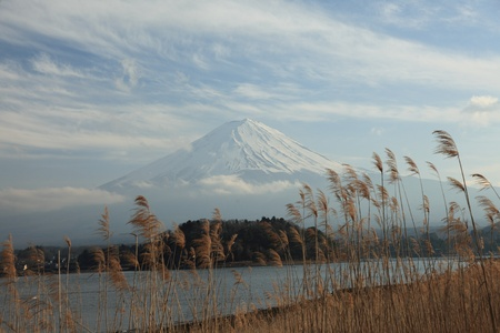 fuji san: View of Mount Fuji from Kawaguchiko lake in march,Snow-capped Mount Fuji with clear sky background