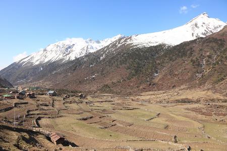 devi: Chopta Valley, Lachen, North Sikkim