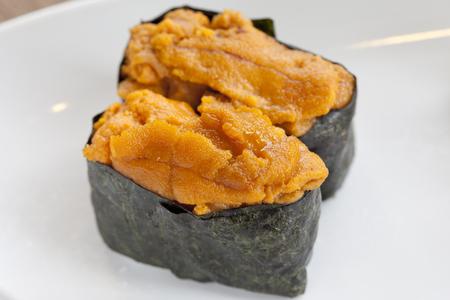 urchin: Uni, sea urchin egg over rice Stock Photo