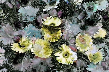 grungey: Abstract background of a grungey bunch of flowers Stock Photo